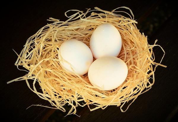 卵はカゴに盛るな