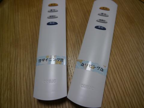 P1010952