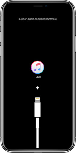 ios12-iphone-x-restore-iphone-itunes-448x900