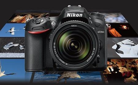 Nikon-D7200-sample-images-550x338