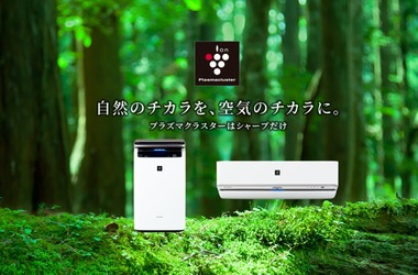SnapCrab_NoName_2020-9-8_8-37-57_No-00