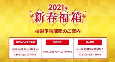 SnapCrab_NoName_2020-12-11_10-0-17_No-00