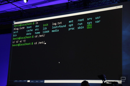 bash-windows-10