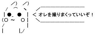 SnapCrab_NoName_2020-6-18_0-23-35_No-00