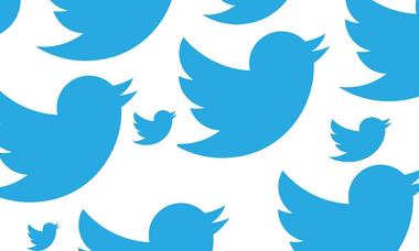 twitterbirds-980x589