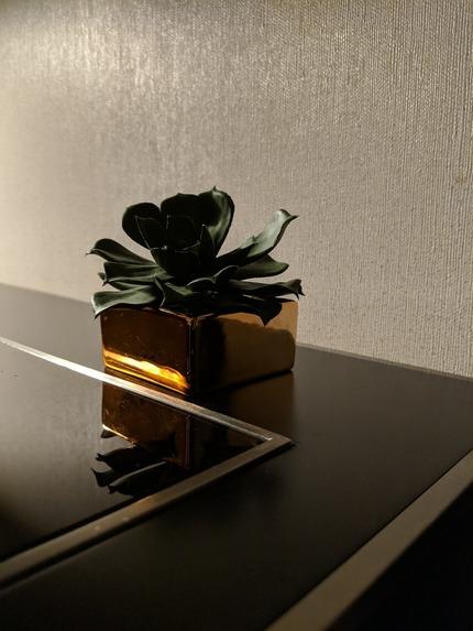 low-light-pixel-2-xl