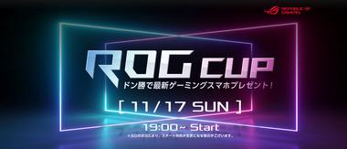 rogcup_main_1400600