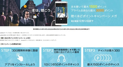 SnapCrab_NoName_2018-11-1_11-26-5_No-00
