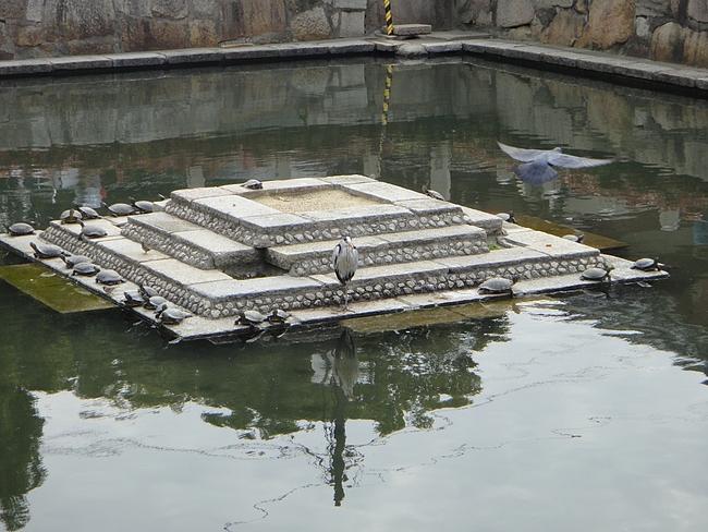 四天王寺 4