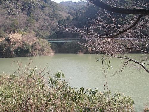 堀河ダム(抹茶色)