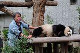 パンダと飼育員さん