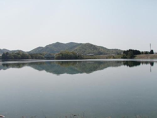青野ダム 5
