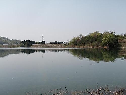 青野ダム 4