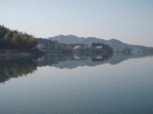湖面に映る風景