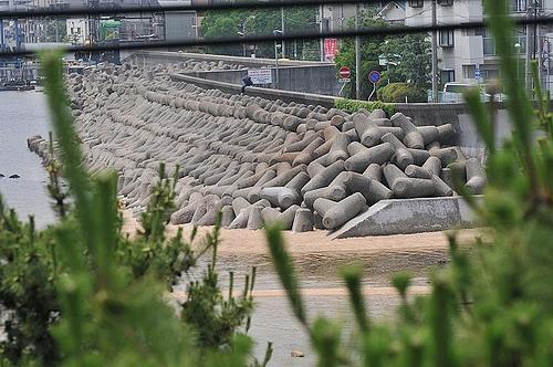 芦屋川河口