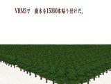 VRM3樹木配置15000本