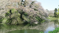 山形市霞城公園5
