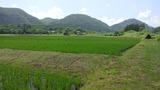 仙山線52