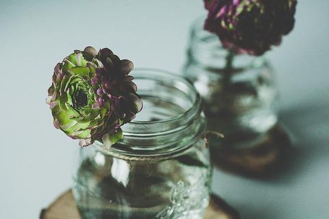 flower-1081954_640