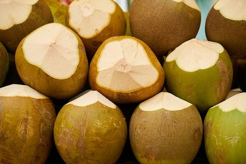 india-coconut-2308864_640