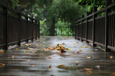 rain-2091249_640