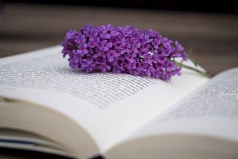 book-2710450_640