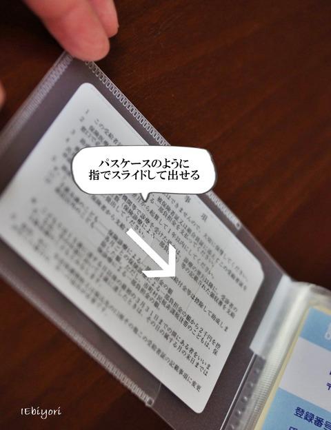 IMGP4895