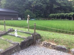 お伊勢参り出張 猿田彦神社 - 11