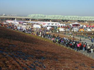 2013・01・31 谷川真理マラソン