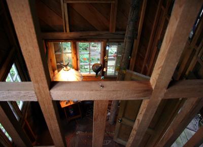 treehouse015