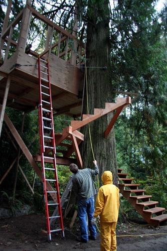 treehouse46