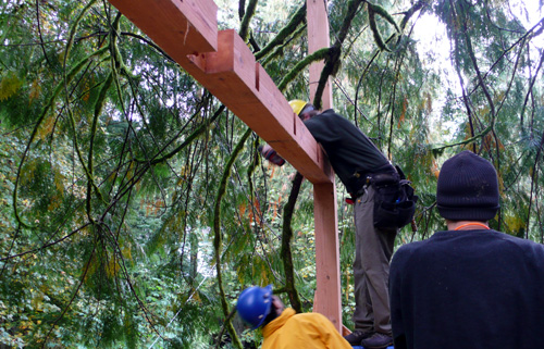 treehouse50