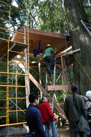 treehouse011