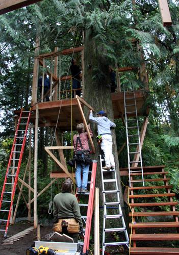 treehouse43