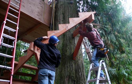 treehouse45