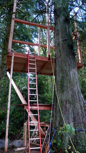 treehouse47