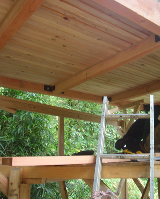 treehouse028