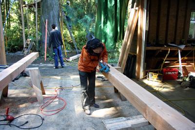 treehouse025