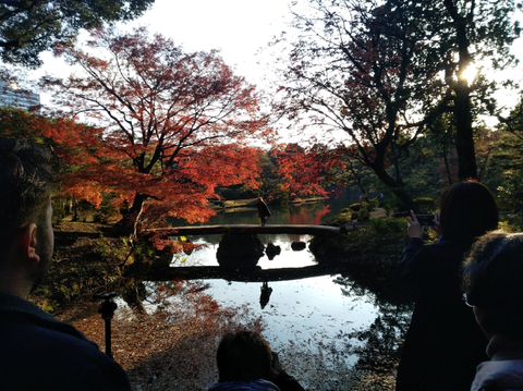 六義園紅葉