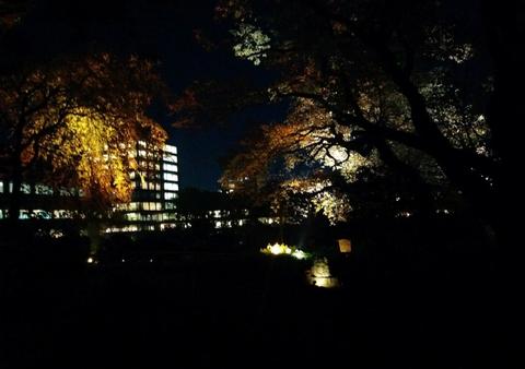 椿山荘夜景