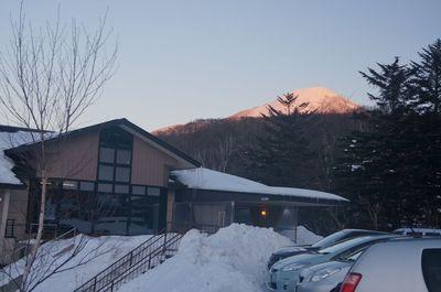 20130129suzuran.jpg