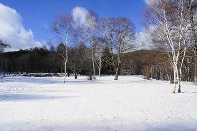 20111217himeki1.jpg