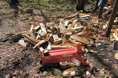 20110531woods.jpg