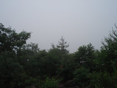 20060618seng.jpg