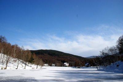20101231himekiko1.jpg