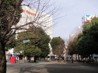 20100120park.JPG