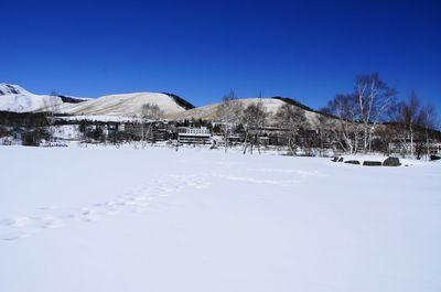 20120220suzuran.jpg