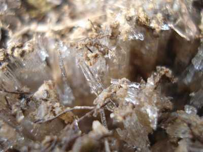 20080125simobasira.jpg