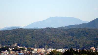 20081030ena.jpg