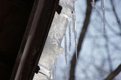 20120221roof.jpg